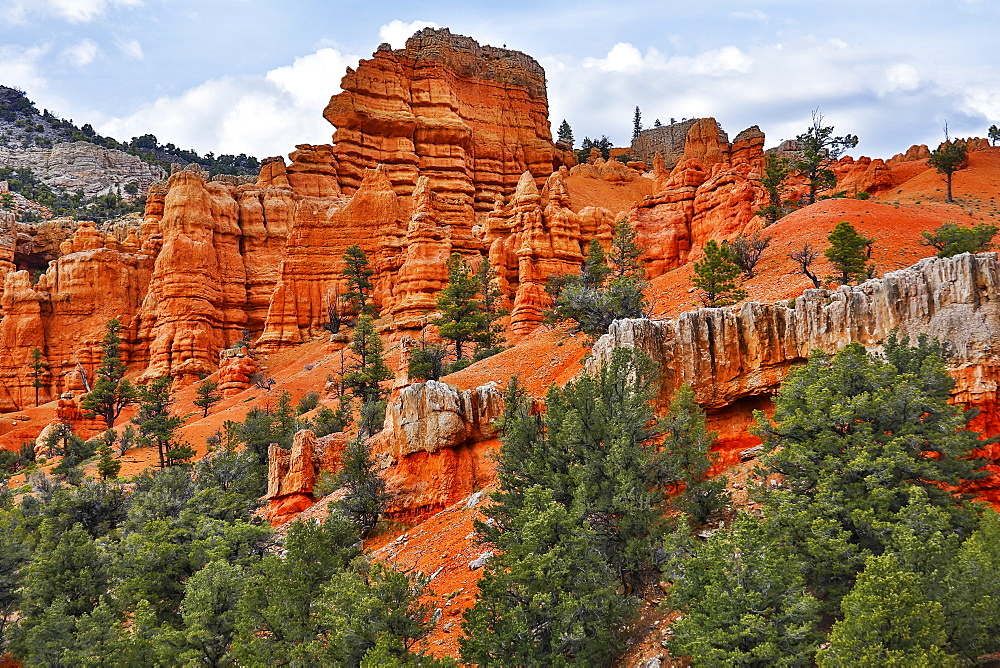 Bright red sandstone in Bryce Canyon National Park, Utah, United States of America