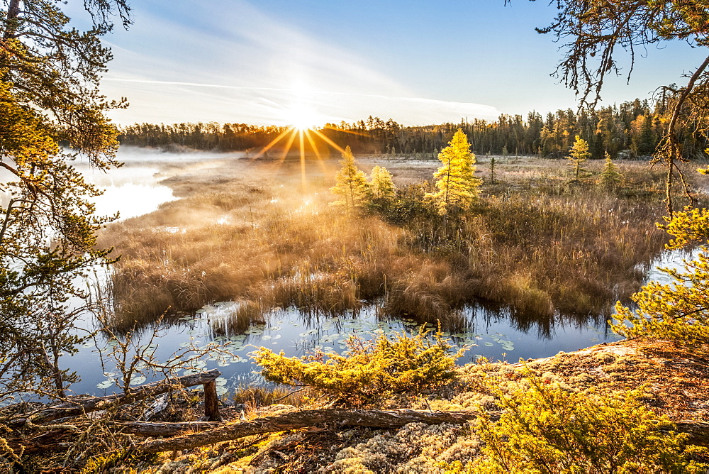 Sunrise over misty bog, Kenora, Ontario, Canada