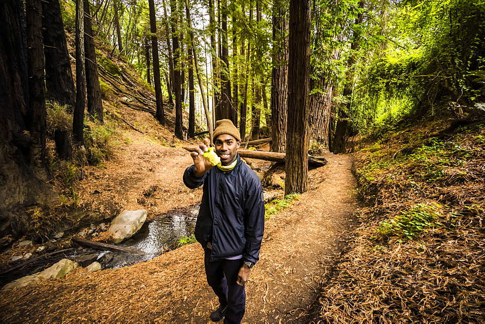 A man stands on a forest trail holding up an eaten apple to the camera, Julia Pfeiffer Burns State Park, California, United States of America