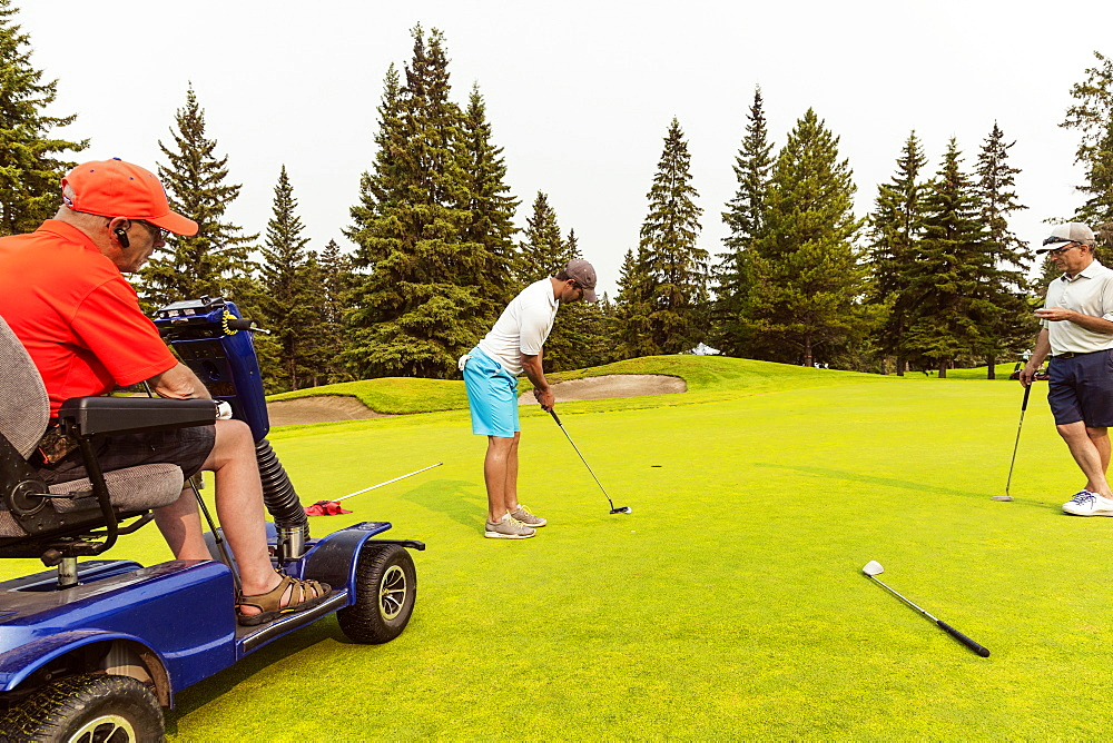 Two able bodied golfers team up with a disabled golfer using a specialized powered golf wheelchair and putting together on a golf green playing best ball, Edmonton, Alberta, Canada