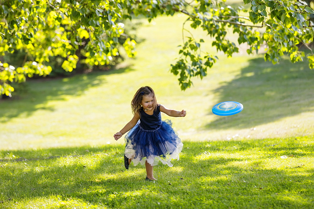 A young girl in a party dress chasing a disc toy that was thrown to her in a park on warm fall afternoon during a family outing, Edmonton, Alberta, Canada - 1116-48026