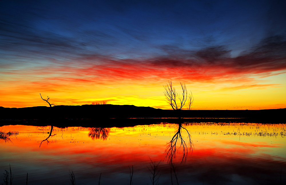 Dramatic sunrise over water, Bosque Del Apache Wildlife Refuge, New Mexico, United States of America