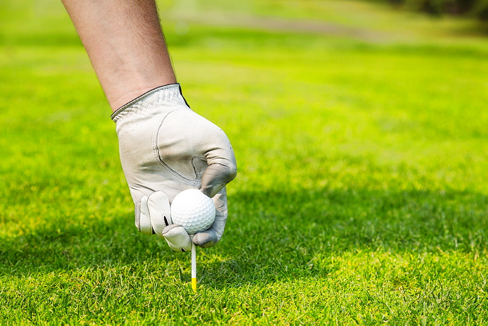 Close up of a golfer's hand wearing a white golf glove and placing a golf ball on a tee, Edmonton, Alberta, Canada