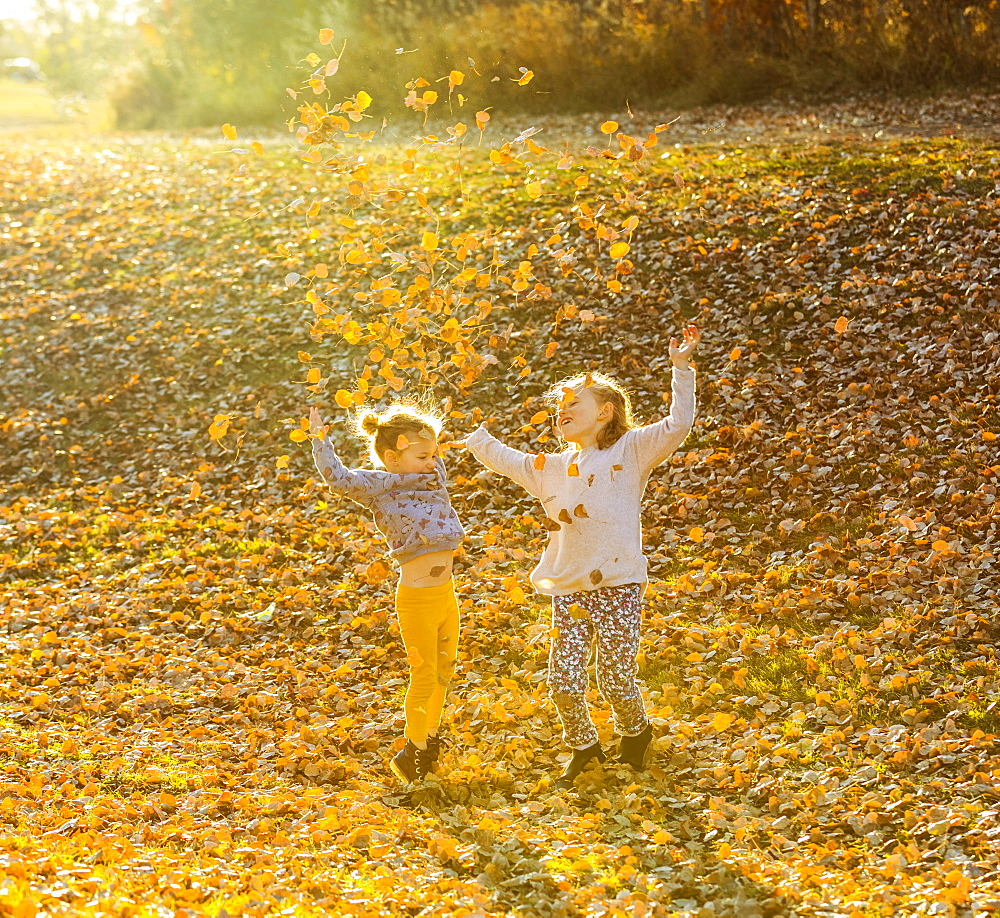 Two young girls playing and throwing leaves in the air in a city park at sunset on a warm fall evening, Edmonton, Alberta, Canada