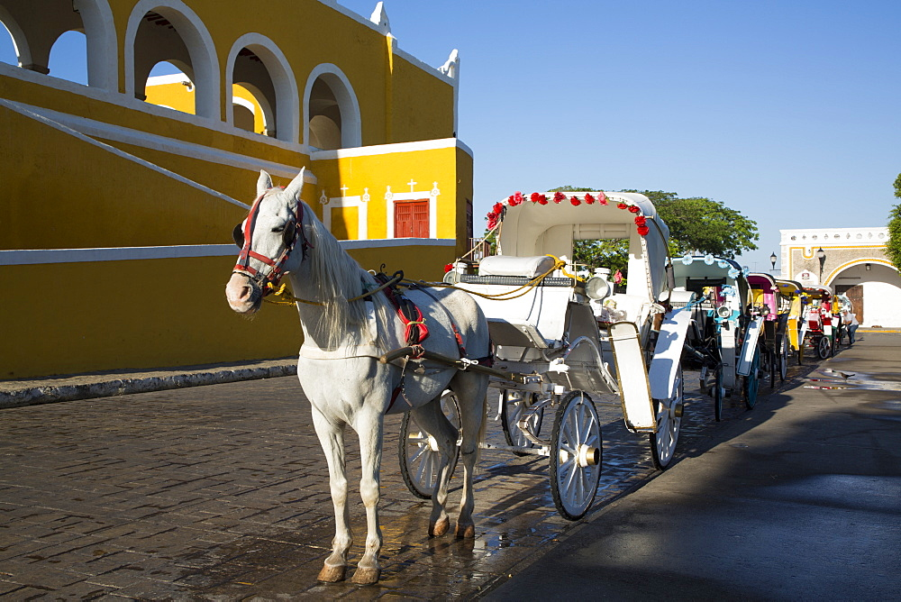 Decorated horses and carriages for tourists in the street, Izamal, Yucatan, Mexico