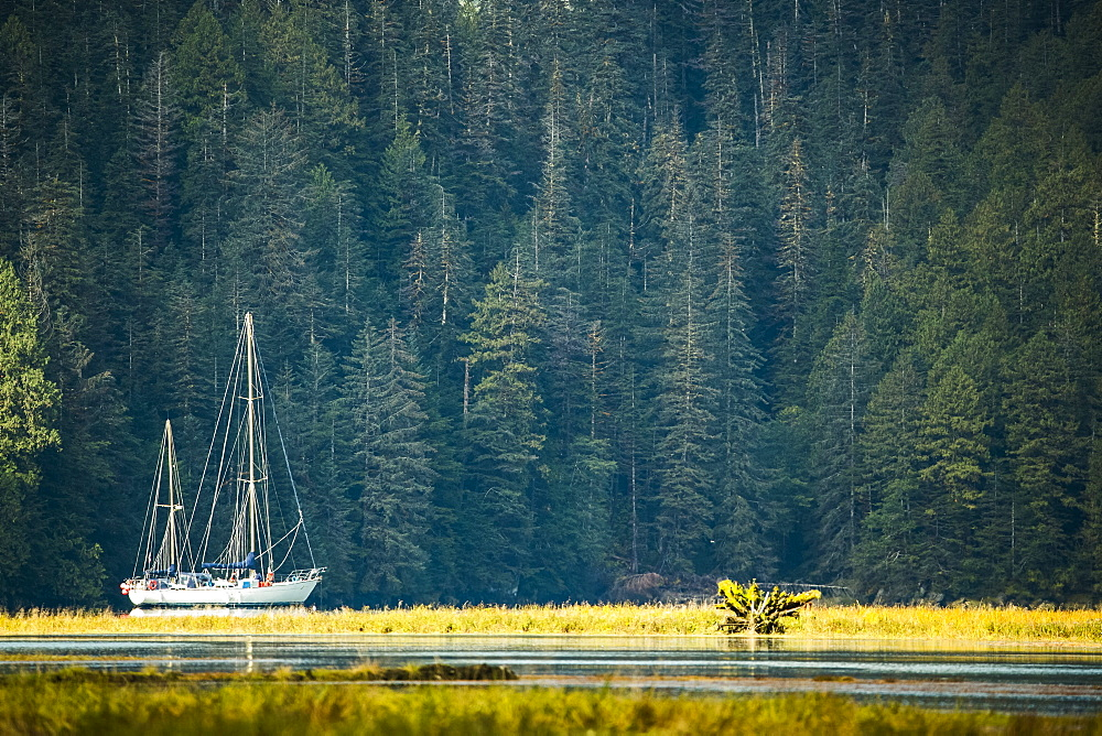 Sailboat in an estuary, Great Bear Rainforest, Hartley Bay, British Columbia, Canada