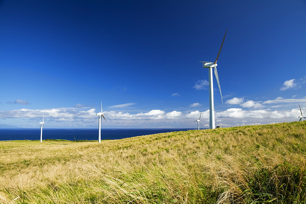 Wind turbines on a wind farm, Upolu Point, North Kohala, Island of Hawaii, Hawaii, United States of America