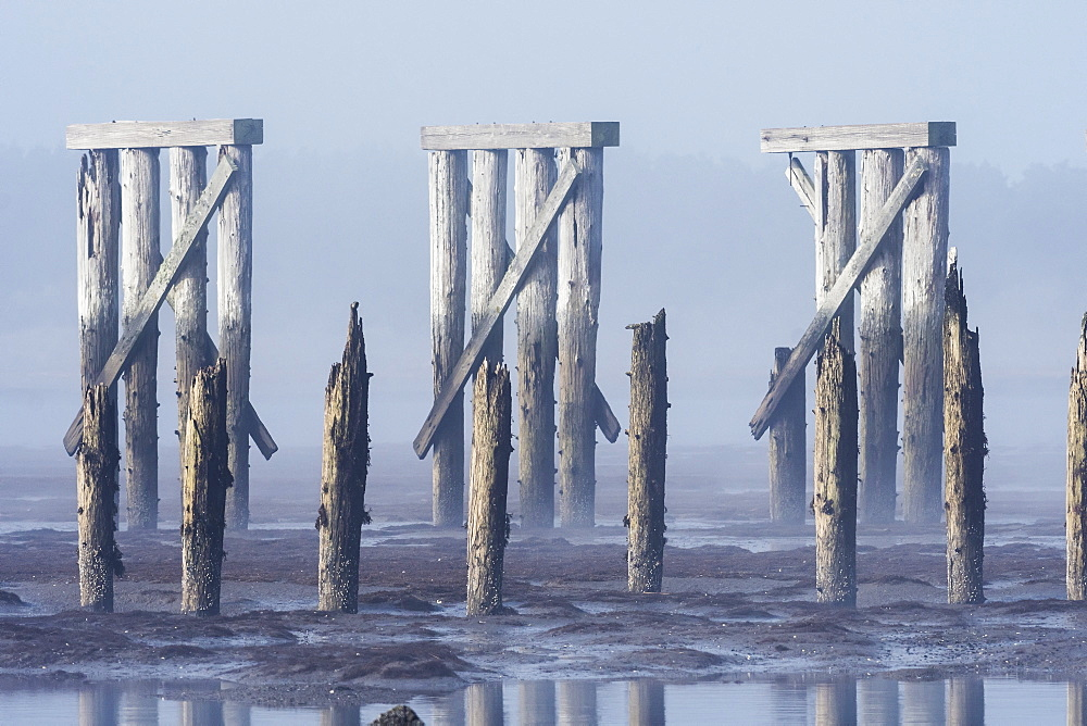 Pilings and a railroad trestle remain at Trestle Bay, Hammond, Oregon, United States of America