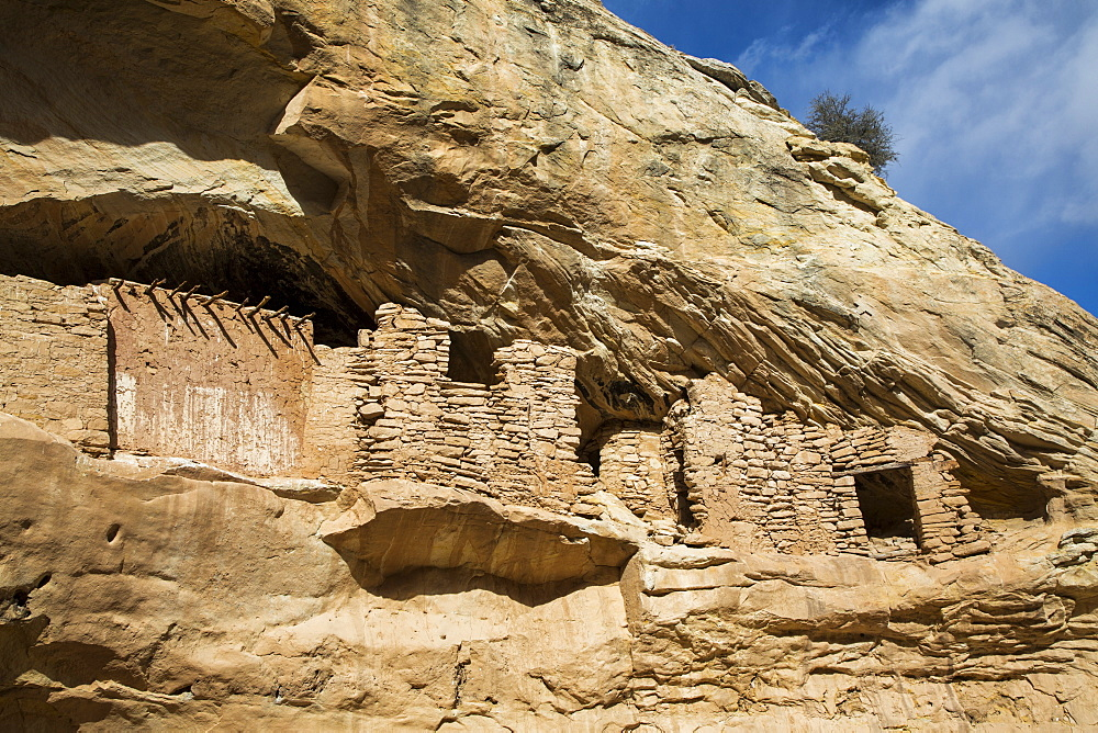 Target ruins, Ancestral Pueblo, up to 1,000 years old, Bears Ears National Monument, Utah, United States of America - 1116-48524