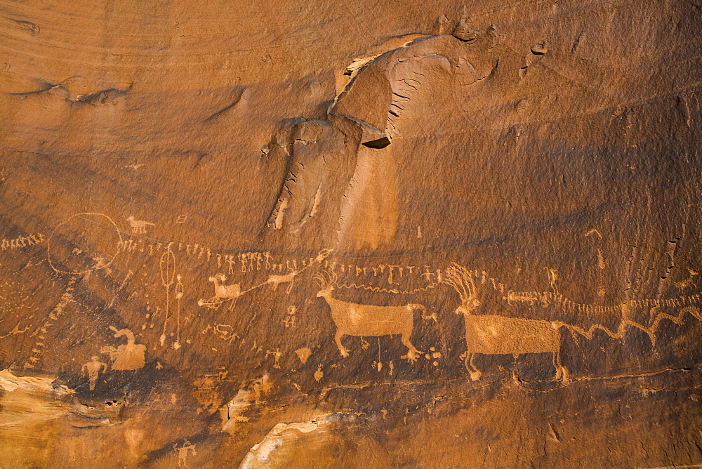 Petrogylph 'Procession Panel', Butler Wash, Shash Jaa National Monument, Utah, United States of America