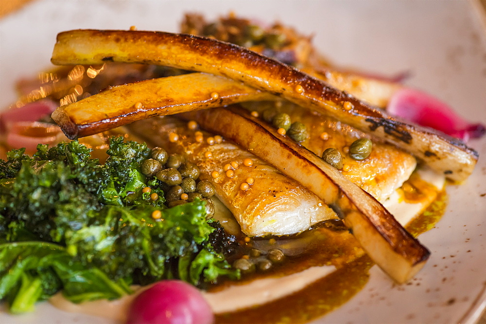 Plate of halibut with parsnips and kale, Hotel Husafell, Iceland - 1116-48730