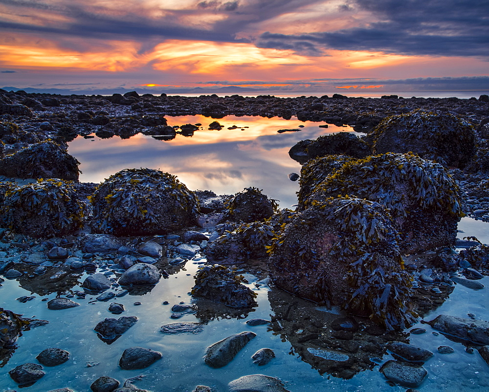 Warm colours from a sunset sky reflect in the tide pools on Acadia Beach, Vancouver, British Columbia, Canada