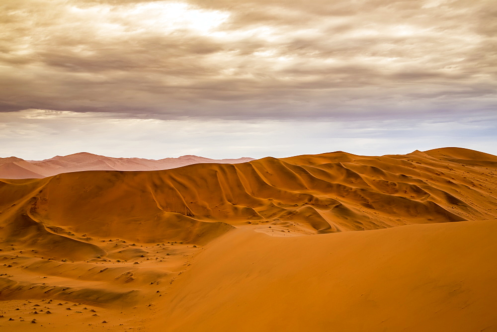 Red sand dunes in the Namib desert under a cloudy sky, Namib-Naukluft National Park, Sossusvlei, Hardap Region, Namibia