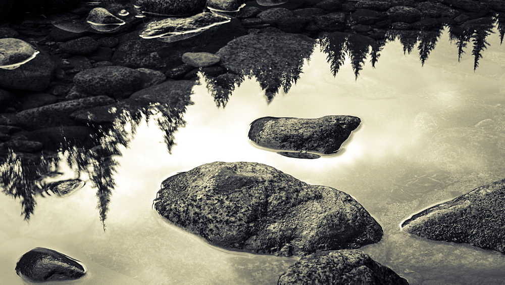 Surface of rocks in clear, shallow water and the reflection of trees from the shoreline, British Columbia, Canada