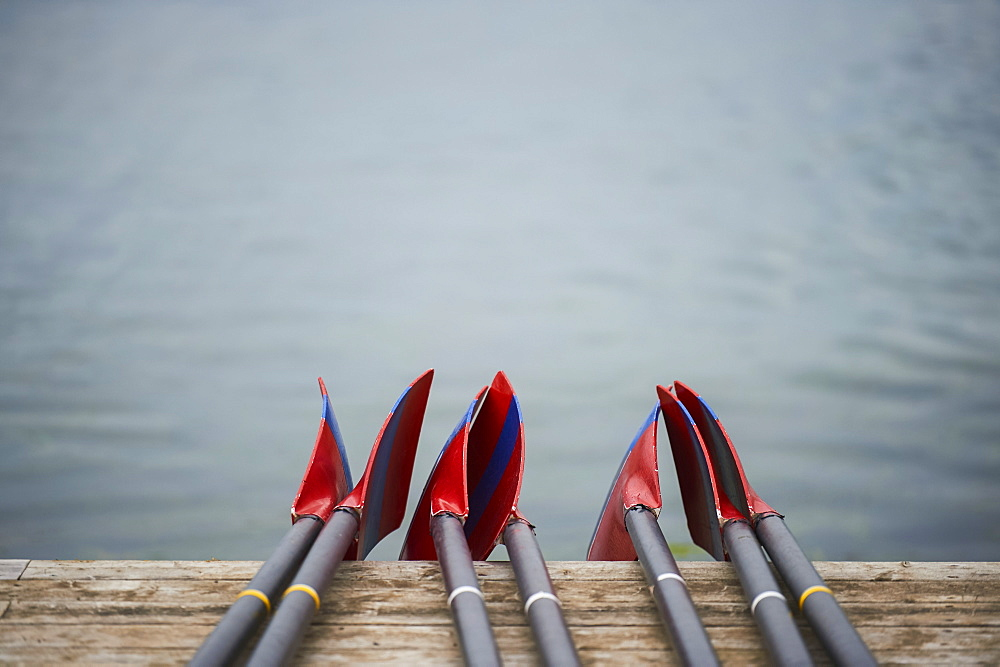 Rowing blades on the dock, Old Welland Canal, Toronto, Ontario, Canada