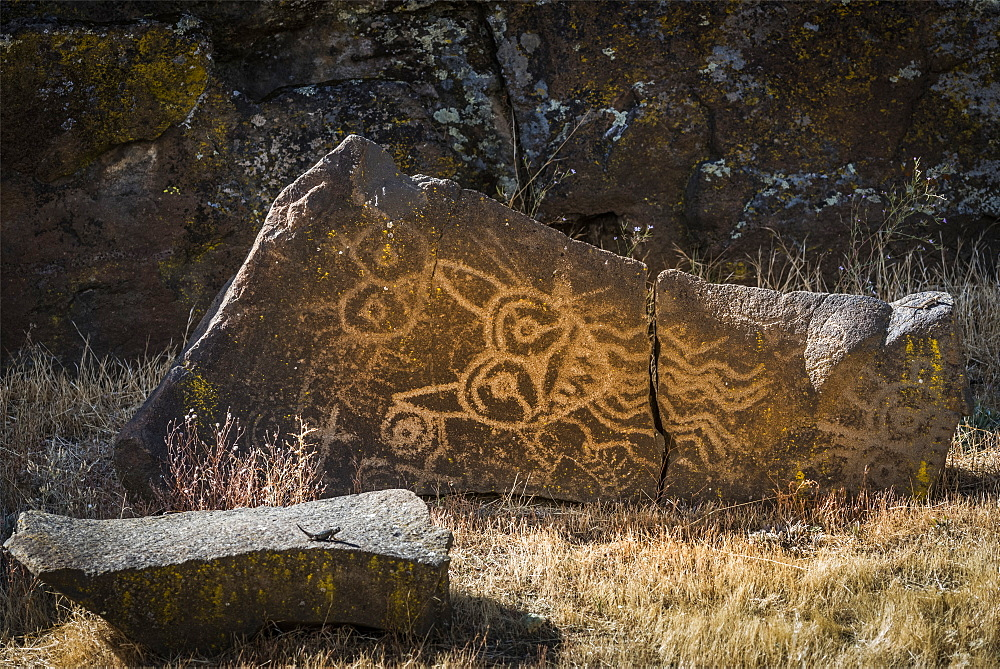 Excellent petroglyphs found at Columbia Hills Historical State Park, Murdock, Washington, United States of America