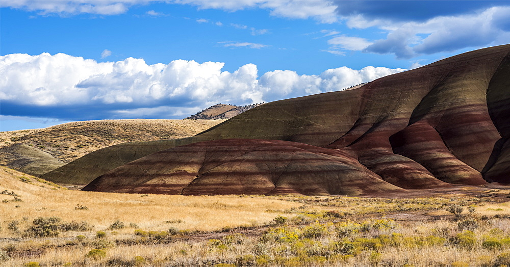 Colourful layers of minerals are exposed at John Day Fossil Beds National Monument. No grass grows on the Painted Hills Unit, Mitchell, Oregon, United States of America