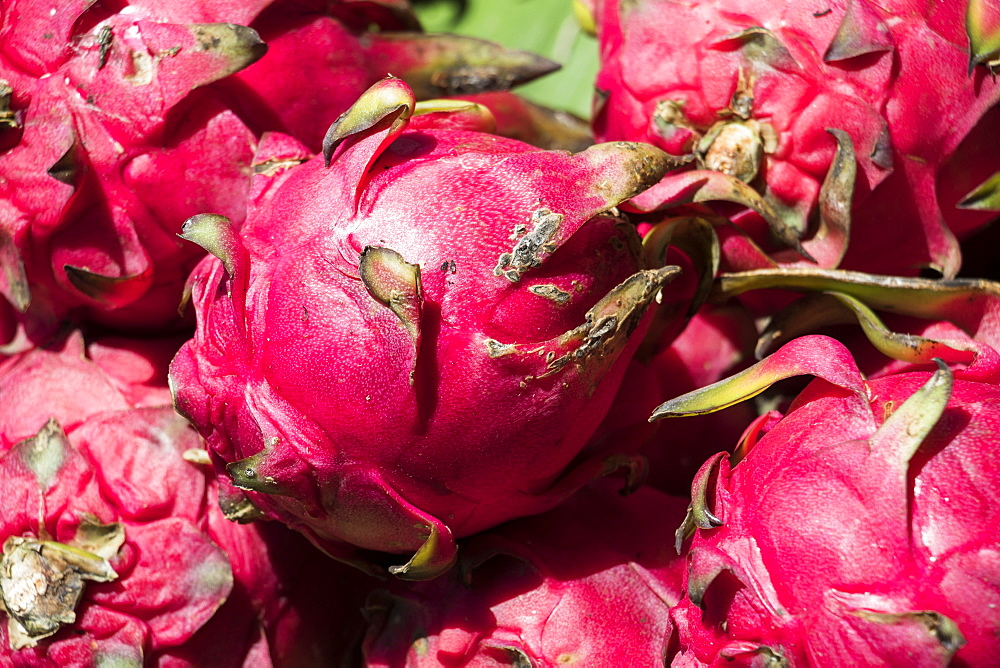 Close-up of Dragon fruit (pitaya) for sale at the Central Market Hall, Phnom Penh, Cambodia