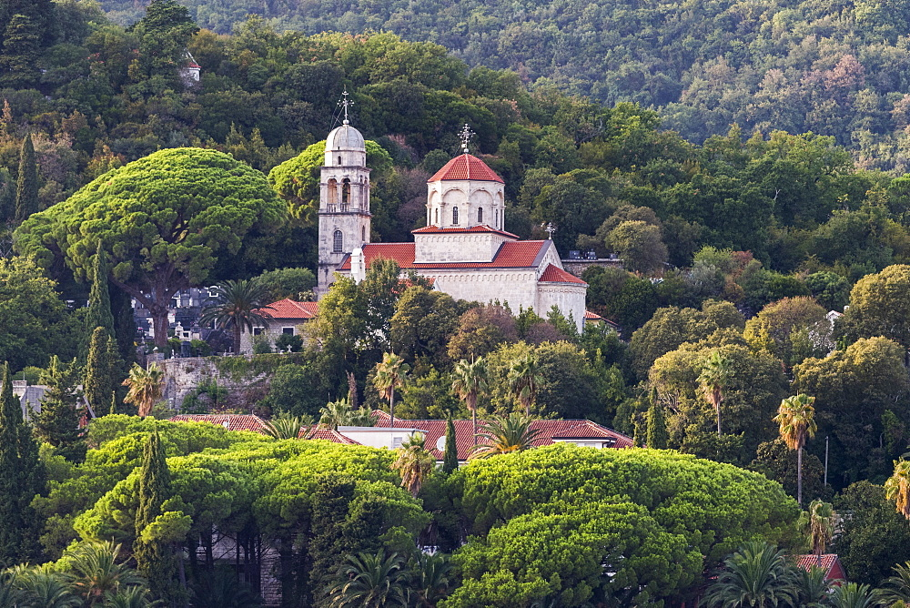 A church and buildings on a hillside surrounded by trees, Herceg Novi, Montenegro