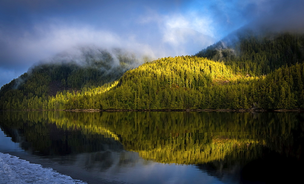 Landscape of the forested coastline and tranquil ocean reflecting the trees and clouds, Hartley Bay, British Columbia, Canada