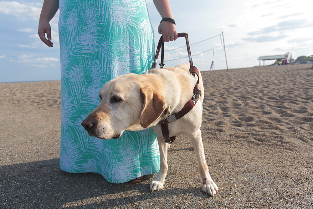Blind woman walking along the beach with her service dog