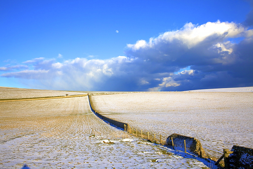 Snow covered South Downs farm land, East Dean, East Sussex, England, United Kingdom, Europe - 1126-1626