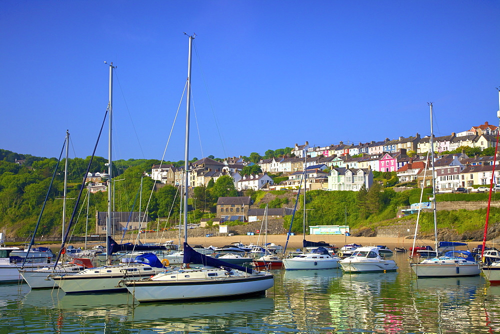 The Harbour at New Quay, Cardigan Bay, Wales, United Kingdom, Europe