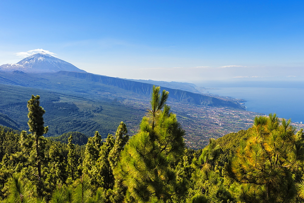 View over the Teide volcano and Teide National Park, UNESCO World Heritage Site, Tenerife, Canary Islands, Spain, Europe