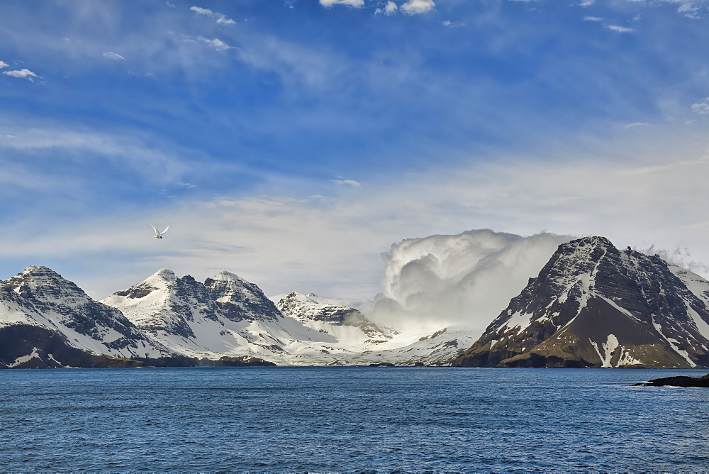 Snow covered mountains, Prion Island, South Georgia, South Georgia and the Sandwich Islands, Antarctica, Polar Regions