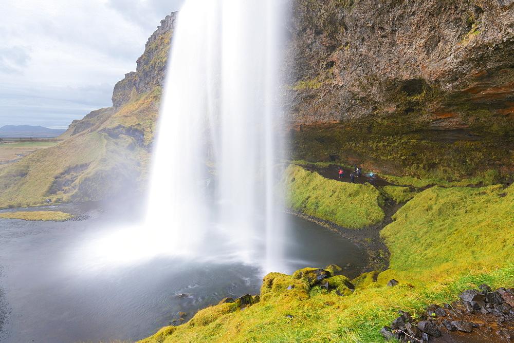 Seljalandsfoss Waterfall, Iceland, Polar Regions - 1132-286