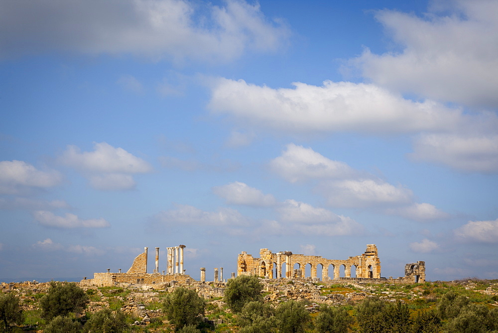 Volubilis, UNESCO World Heritage Site, Morocco, North Africa, Africa