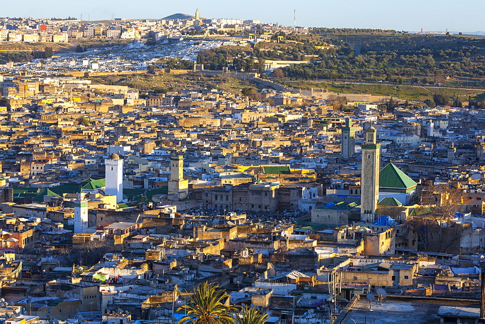 Elevated view across the Old Medina of Fes, UNESCO World Heritage Site, Fez, Morocco, North Africa, Africa