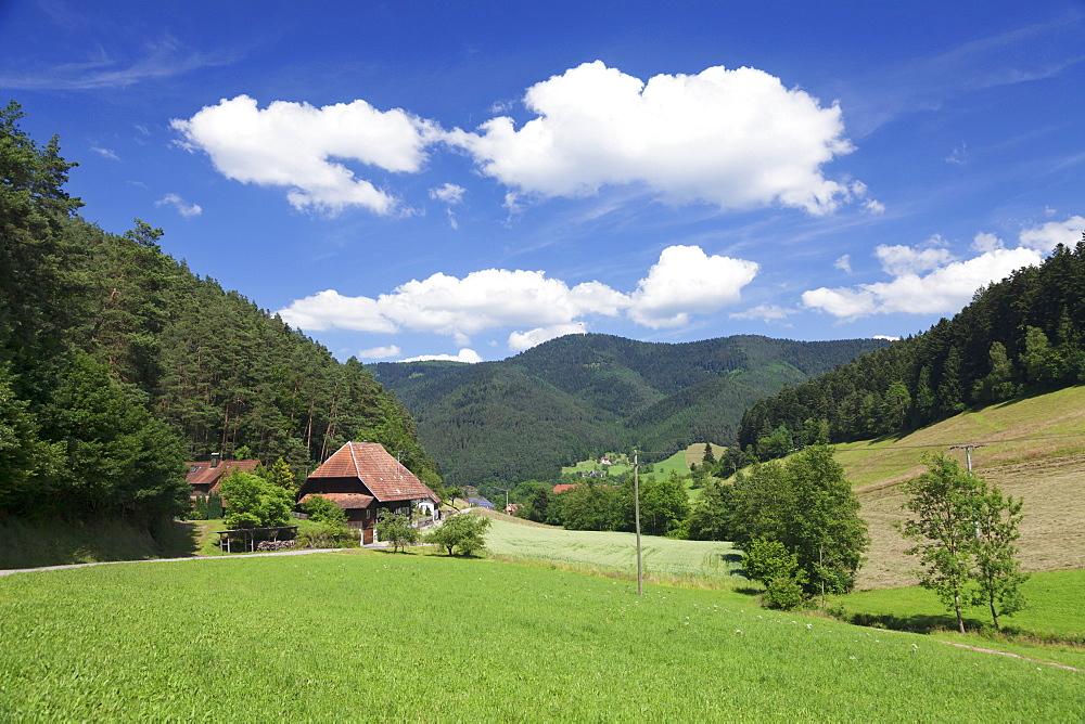 Black Forest house, Gutachtal Valley, Black Forest, Baden Wurttemberg, Germany, Europe