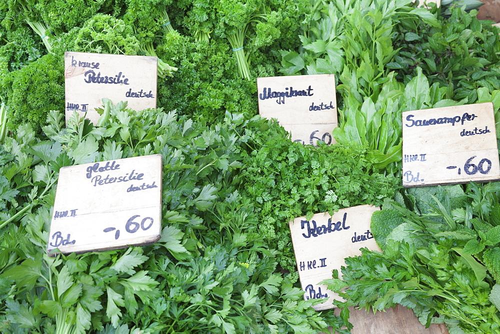 Fresh herbs at a market stall, weekly market, market place, Esslingen, Baden Wurttemberg, Germany, Europe