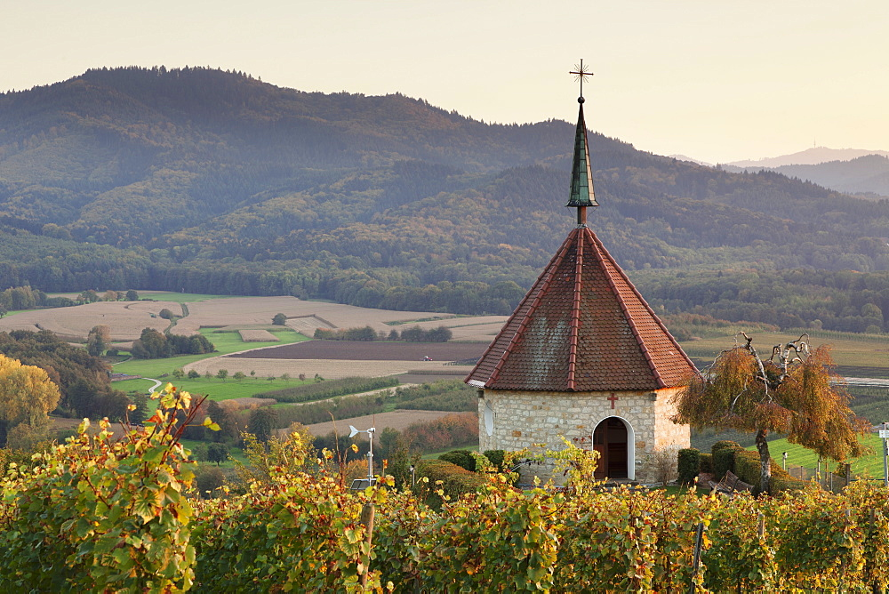 Olbergkapelle Chapel, Ehrenstetten, Staufen im Breisgau, Markgrafler Land, Black Forest, Baden Wurttemberg, Germany, Europe