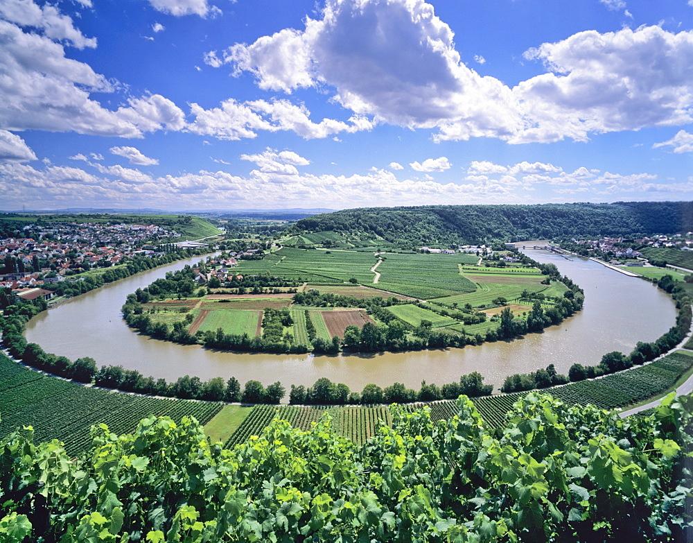 Bight of Neckar River, Mundelsheim, Baden Wurttemberg, Germany, Europe
