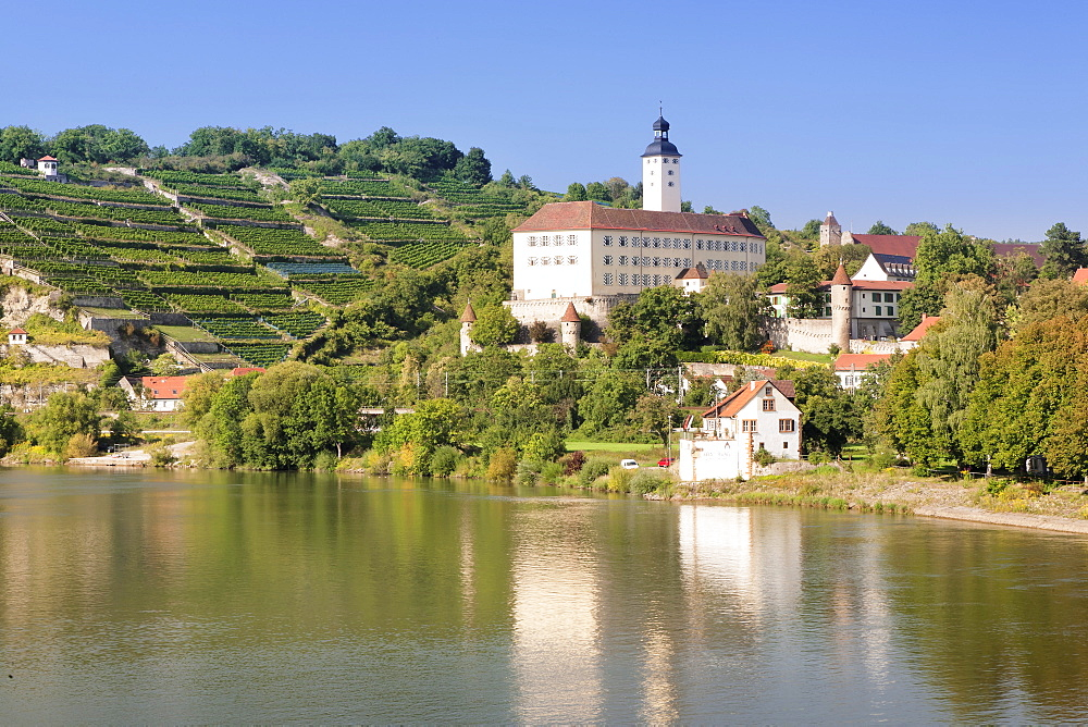 Schloss Horneck Castle, Gundelsheim, Neckartal Valley, Neckar River, Baden Wurttemberg, Germany, Europe