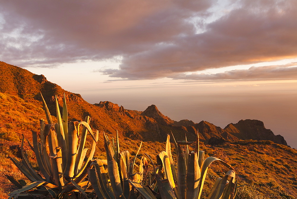 Teno Mountains at sunset, Tenerife, Canary Islands, Spain, Europe
