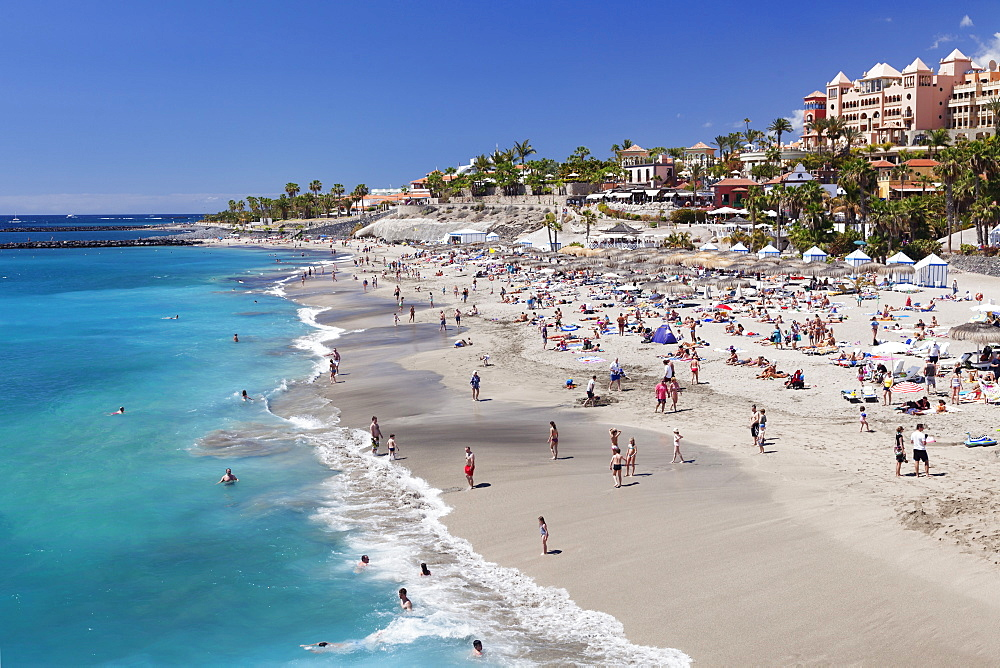 Playa del Duque beach at Costa Adeje, Tenerife, Canary Islands, Spain, Atlantic, Europe