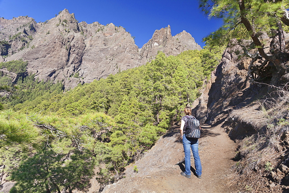 Hiker on a hiking path from Los Brecitos through Caldera de Taburiente, Parque Nacional de la Caldera de Taburiente, UNESCO Biosphere Reserve, La Palma, Canary Islands, Spain, Europe