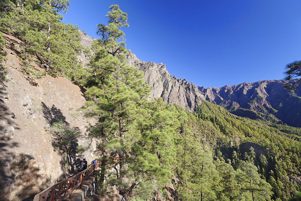 Hiking path from Los Brecitos through Caldera de Taburiente, Parque Nacional de la Caldera de Taburiente, UNESCO Biosphere Reserve, La Palma, Canry Islands, Spain, Europe