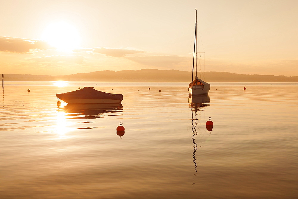 Sailing boat at sunset, Lake Constance, near Konstanz, Baden-Wurttemberg, Germany, Europe