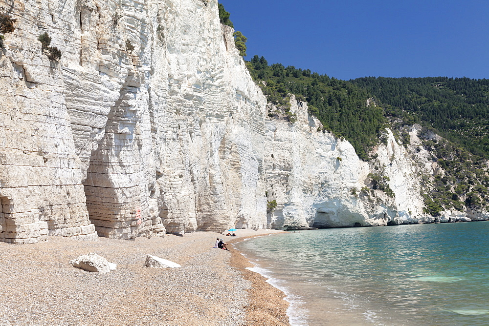Vignanotica Bay between Mattinata and Vieste, Gargano, Foggia Province, Puglia, Italy, Europe