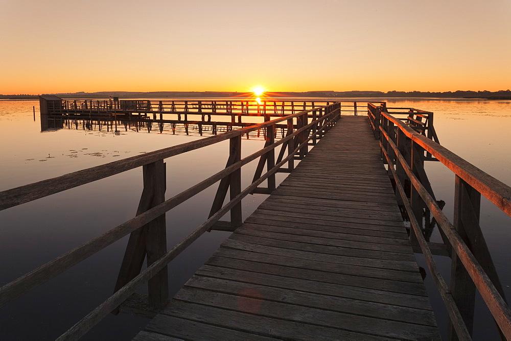 Federsee Lake at sunrise, Nature reserve, Bad Buchau, Upper Swabia, Baden-Wurttemberg, Germany, Europe
