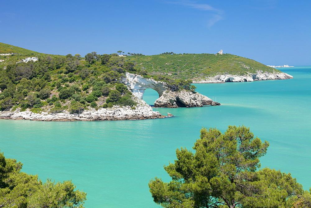 Cala San Felice bay with Architiello di San Felice rock arch, Gargano, Foggia Province, Puglia, Italy, Mediterranean, Europe
