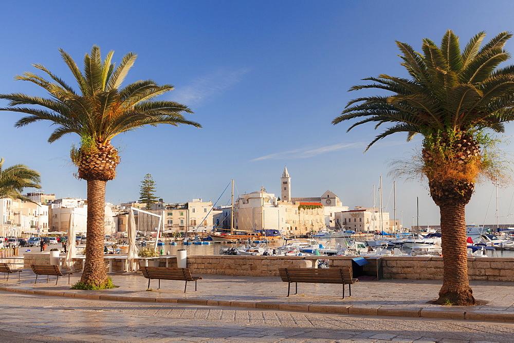 View over the harbour to San Nicola Pellegrino cathedral, Trani, Le Murge, Barletta-Andria-Trani district, Puglia, Italy, Mediterranean, Europe