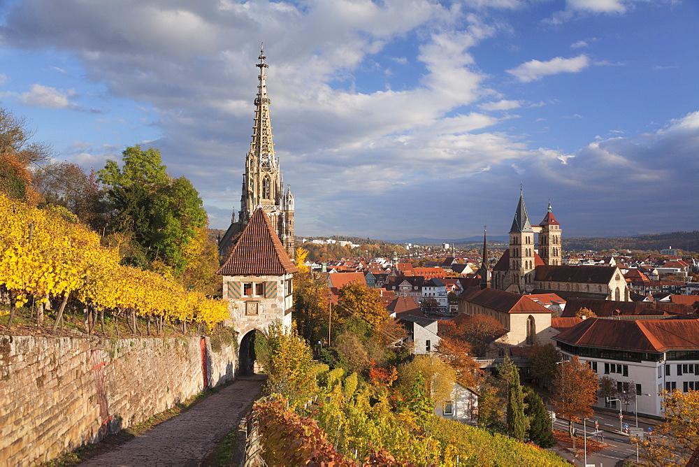 View from vineyards to Esslingen with St Dionys church and Frauenkirche church, Baden-Wuerttemberg, Germany