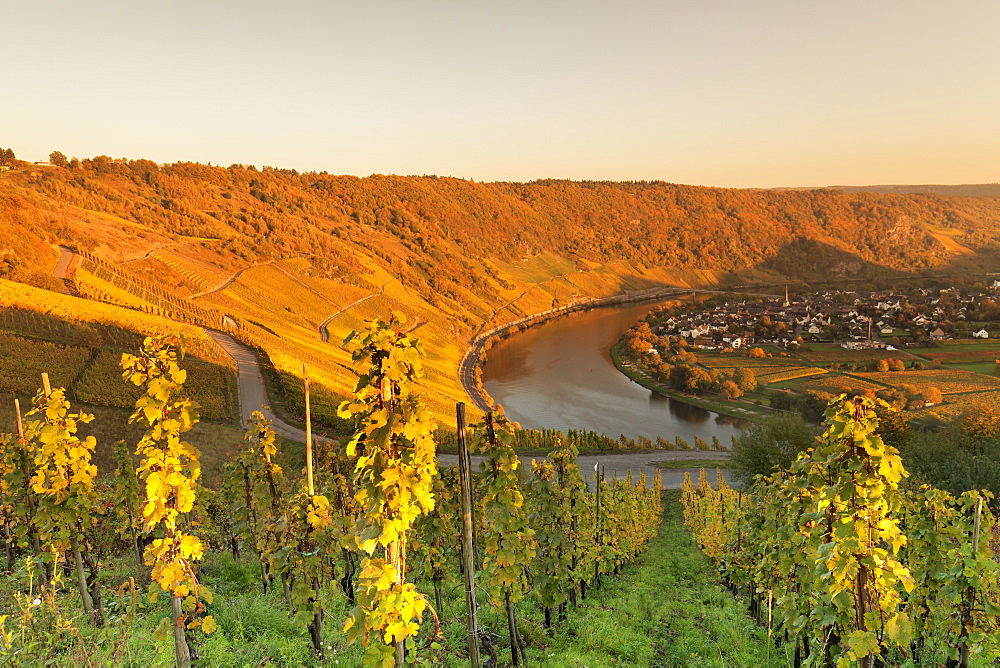 Loop of Moselle River at sunset near the town of Kroev, Rhineland-Palatinate, Germany - 1160-3789