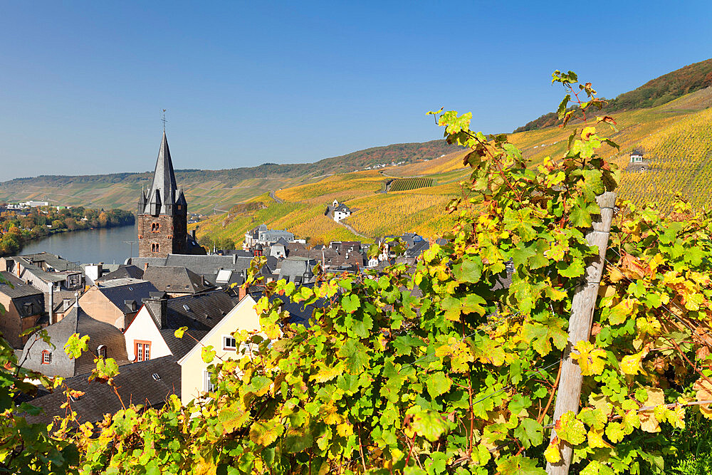 Bernkastel-Kues in autumn, Moselle valley, Rhineland-Palatinate, Germany - 1160-3793
