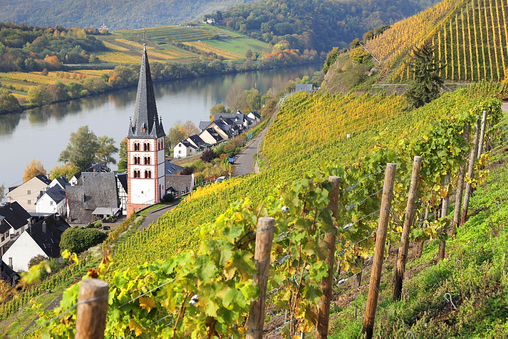 View of Merl district, Moselle Valley, Zell an der Mosel, Rhineland-Palatinate, Germany - 1160-3802